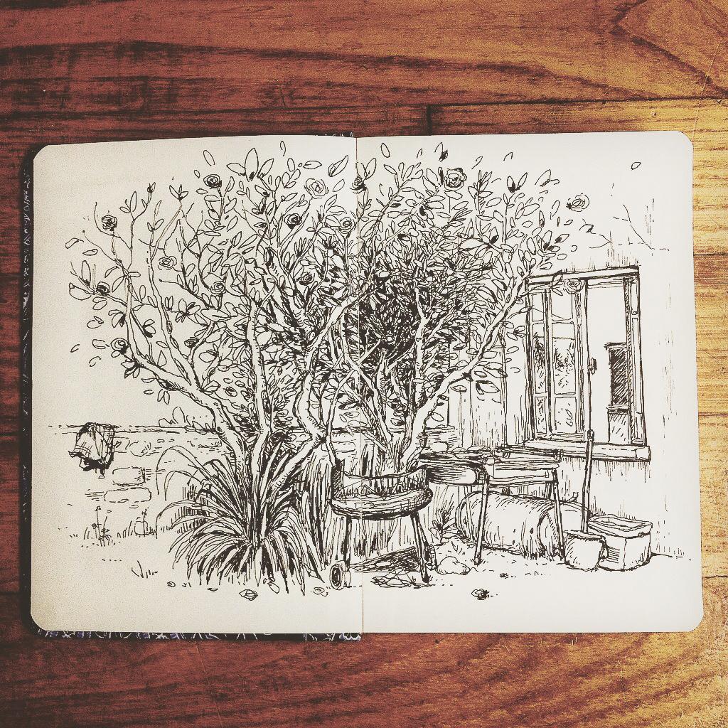 Croquis jardin arbre carole mariet carole mariet portfolio for Croquis jardin