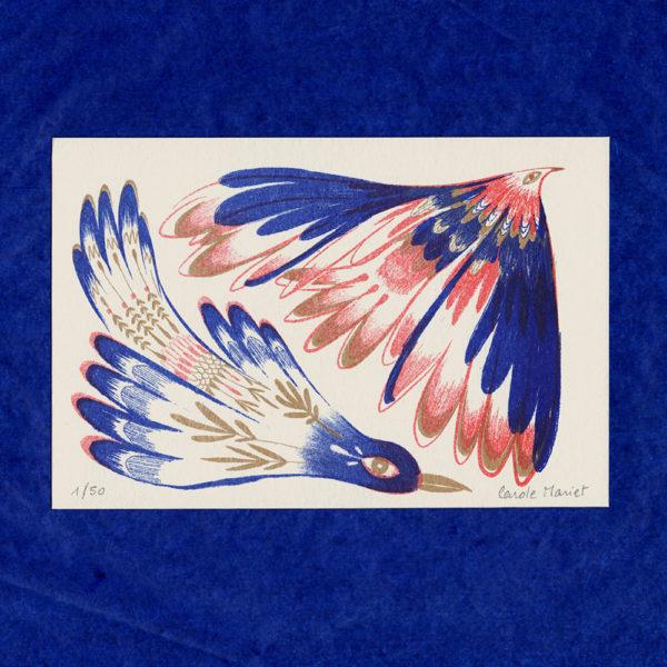 Carte postale Oiseaux